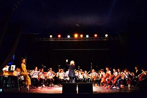 Orchestra Giovanile Musica Insieme